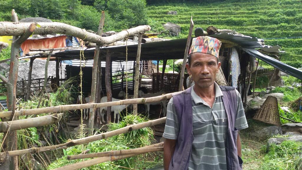 Shelter needed for livestock